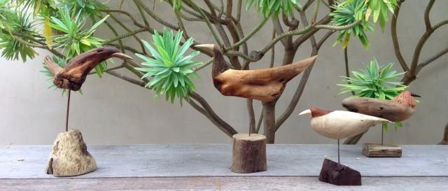 driftwoodbird