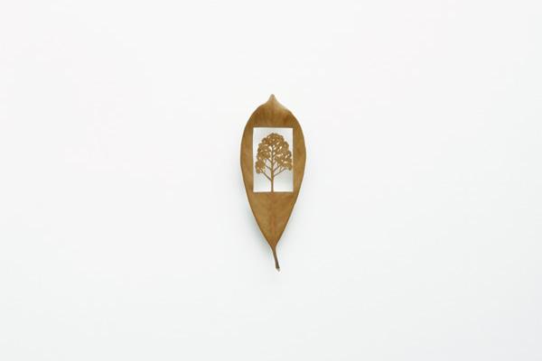 mitsuru_koga_leaf04