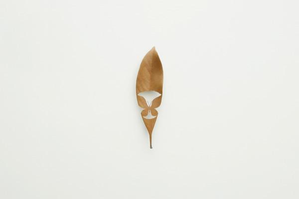 mitsuru_koga_leaf07